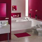 Bathroom Decorating Ideas Remodel Gallery
