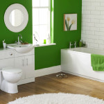 Bathroom Interior Painting Ideas For