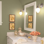 Bathroom Paint Ideas Picture