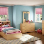 Bedroom Paint Ideas Ways Redecorate