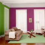 Best Color Paint Living Room Purple Wall