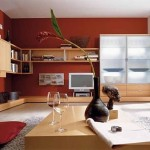 Colors Paint Living Room Red Image