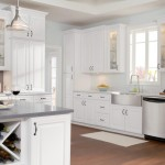 Designs Ideas Cabinet Doors Kitchen Painted Cabinets Colors