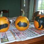 Here Are Painted Pumpkins From One Year Cat Following Two