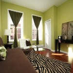 How Paint The House Interior Green