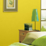 Kim Color Trend And Specialist Your Inspiration Results