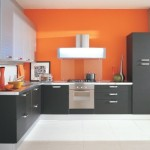 Kitchen Cabinet Doors Painting Ideas For