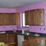 Kitchen Pink Wall Paint