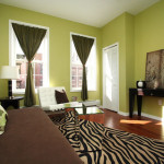 Living Room Green Wall Paint Ideas