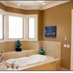 Most Popular Interior Paint Colors For Bathroom