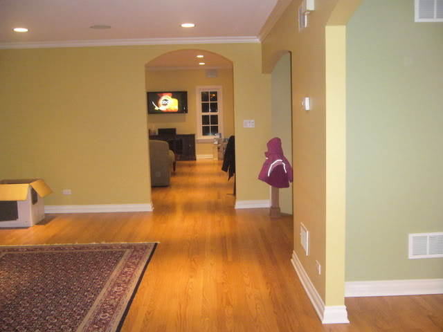Need Help Choosing Gold Wall Paint Color