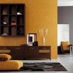 Paint Colors Themes Design Black Furniture Theme Color Decoration