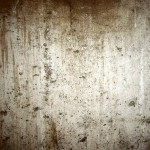 Paint Wall More Beautiful And Awesome Concrete Basement Texture