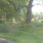 Painting The Chain Link Fence