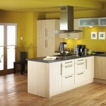 The Best Kitchen Designs Paint For Design And