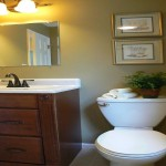 The Powder Room Color Schemes