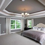 Tray Ceiling Paint Ideas