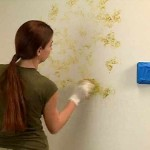 Wall Painting Techniques Decorative Design