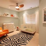 Baby Room Ideas How Choose Paint Colors For Your
