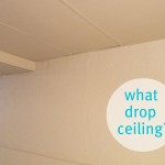 Basement Update Lazy Guide Painting Drop Ceilings