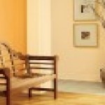 Best Orange Interior Paint Colors Ideas