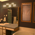 Brown Wall Paint For Bath Room