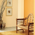 Interior Paint Color Best Orange Colors Ideas Image