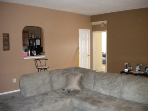 Light Brown Painted Rooms