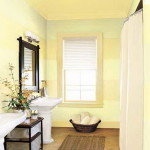 Paint Decor Rooms Wall Colors For Small Bathroom Appealing Room Color