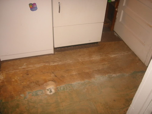 Paint Linoleum Floor Tile