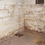 Paint That Ugly Stained And Flaking Off The Basement Walls