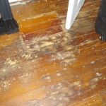 Painting Wood Flooring These Are Floors Attached Thumbnails