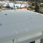 Roof Painting After