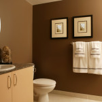 Rusty Brown Shade Intuitive Bathroom Paint Ideas For Every