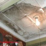 You Can See From The Graphs Shown Here These Acoustic Ceiling
