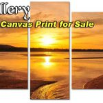 Canvas Wall Art For Sale