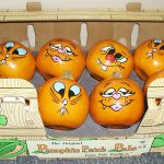 Count Painted Pie Pumpkins Bay Baby Produce