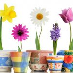 Flower Pot Painting Designs Homesideas Painted