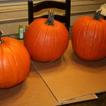 Here What Our Pumpkins Looked Like Start