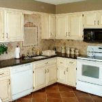 Painting Kitchen Cabinets Ideas Color Cabinet