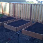 Planting Square Foot Garden