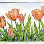 Simple Watercolor Painting Ideas This Very Border