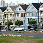 The Six Painted Ladies Seen Opening Full House Alamo