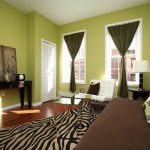 Trendy Interior Paint Color Ideas Accent Wall