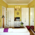 Apartment Paint Colors Small Living Room Ideas