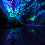 Artist Paints Rooms Murals Glow Under