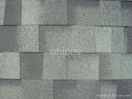 Asphalt Shingles Shingle