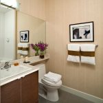 Bathroom Ideas Small Bathrooms
