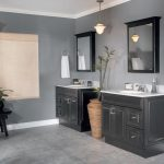 Bathroom Paint Type Home