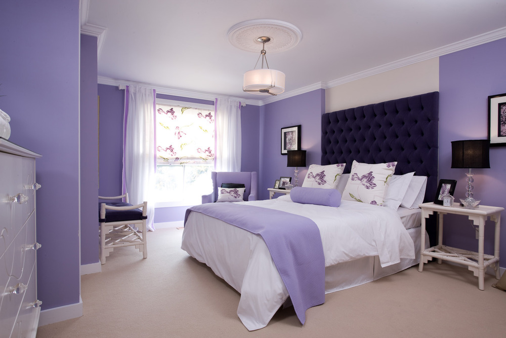 Best Wall Paint Combination Ideas Home